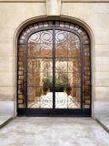 Европейским двери ковки чугуна типа застекленные двойником внешние