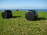 Película 750X1500X25um Anti-UV da ensilagem da grama para o mercado 2017 de Ireland
