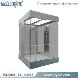 Ascenseur panoramique guidé de passager de levage de vente chaude avec la porte de véhicule en verre
