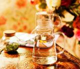De creatieve Kruik van het Sap van het Glas van Borosilicate van het Ontwerp