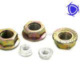 Flange Nut /Collared Hex Nut DIN6923