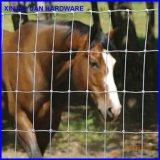 Bauernhof-Eisen-Zaun-/Cattle-Zaun-/Farm-Zaun