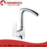 L'eau à la mode sauvegardant le robinet à levier unique de cuisine (ZS60205)
