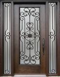 一義的なデザイン青銅の単一の小さい機密保護の外部ドア