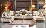 Sofa de luxe, sofa royal, sofa de tissu, sofa de palais (A899)
