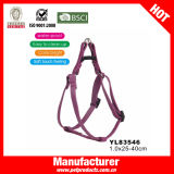 TPU Dog Collar, Dog Harness und Leash Set (YL83534)