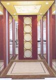 Ascenseur de passager de Fujizy avec En81 le certificat Fjk8000-18
