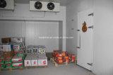 냉각장치를 위한 중간 크기 찬 룸 또는 냉장고 또는 냉장고