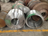 Qualität Soem schmiedete Stahlring 34CrNiMo6