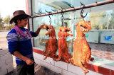 Honglingの完全なステンレス鋼の子ヒツジラックオーブン肉オーブン