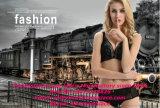 Women의 Underware를 위한 높은 Quality Sexy Silicone Elastic Lace
