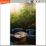Impression de Silkscreen de peinture de la qualité 3-19mm Digitals/gravure à l'eau forte acide/givré/configuration gâchée/verre trempé pour le mur/étage/partition à la maison avec SGCC/Ce&CCC&ISO