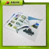 Impresión del libro del compartimiento/surtidor colorido 53 del libro de la impresión