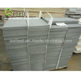 Hot Selling High Quality Honed Finished Gray Color Sandstone pour mur et plancher
