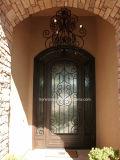 Porta interior arqueada do ferro com luzes laterais para a casa