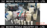 O OEM do profissional personaliza o molde plástico do purificador da água