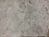 Сляб гранита китайского Бордо начала белый для плиток настила/Countertop