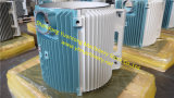 부유한 아연 색칠 3gzf114031-20를 가진 철 주물 발전기 프레임