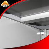 Gabinete de armazenamento de vidro do arquivo da porta deslizante do metal quente de Saling com boa qualidade