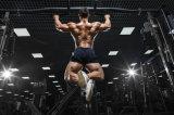 최신 판매 주사 가능한 Anadrol 스테로이드 호르몬 공급자 Bodybuilding CAS434-07-1