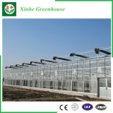 Tuin/het Groene Huis van het Glas van de Tunnel van de Landbouw voor het Groeien van de Groente/van de Bloem