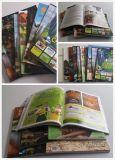 Libro en rústica Softcover a todo color del libro de la impresión de la impresión del libro