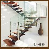 Лестница Railing шикарной конструкции стеклянная и деревянных нутряная (SJ-3038)