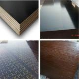 防水構築の材木のフィルムは合板に直面した