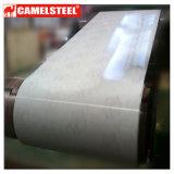Il laminatoio Camelsteel della Cina fornisce il mattone principale PPGI del marmo di qualità