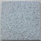 Mattonelle/lastre grige del granito G640 per il pavimento/Pavering