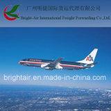 Agente de transporte de Guangzhou China a Bolívia