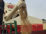 밀을%s 다기능 결합 수확기 또는 밥 또는 콩
