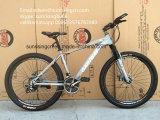 A montanha nova do projeto 2017 Bicycles Sr-MTB311