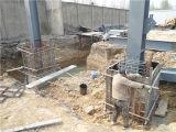 Taller de la estructura de acero del diseño de la construcción (BYSS011407)