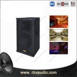 Ca-10 sondern 10 Zoll kompakte PA-Lautsprecher-Spalte-aus