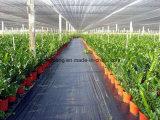 雑草防除のための卸し売りPPによって編まれるファブリック