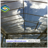 Estufa de vidro de Venlo com sistema hidropónico