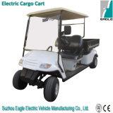 Automobile di impianto elettrico (EG2049HCX, per 2 persone)