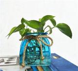 Tarros de cristal rurales azules del estilo de la manera/botella de cristal del florero de cristal