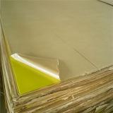 L'approvisionnement de Jinan Alands a moulé la feuille acrylique pour l'éclairage