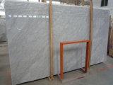 Естественные Polished плитки Calacatta Carrara мраморный Polished, мрамор белизны Италии