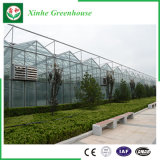 Aluminiumprofil Multi-Überspannung Glas-Gewächshaus