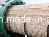 De houten VacuümApparatuur van de Behandeling van de Druk