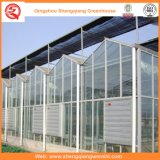 Vegetais/flores/casa verde de vidro da exploração agrícola/jardim
