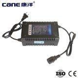 chargeur de batterie profond de chargeur de batterie de cycle de 48V 38ah