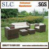 Sofà stabilito della mobilia di /Rattan del sofà esterno del rattan/sofà del giardino impostato (SC-B9508)