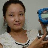 Compteur de débit de turbine de l'eau (CX-LTFM)