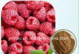 Кетоны выдержки поленики потери веса чисто естественные 4%~99%