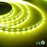 5050 indicatore luminoso dell'interno bianco 5m della striscia 12V 24V della flessione del LED