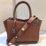 2017 Winter-neue modische Handtaschen-Damentote-Beutel Sy8019